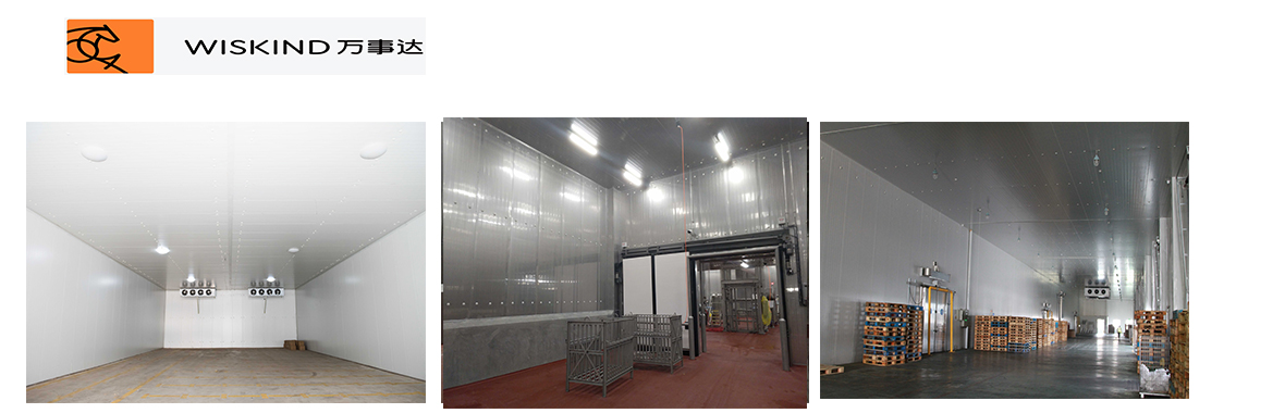 Freezer room with Polyurethane sandwich panel and cold storage door